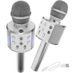 Karaoke - mikrofonas su garsiakalbiais Silver